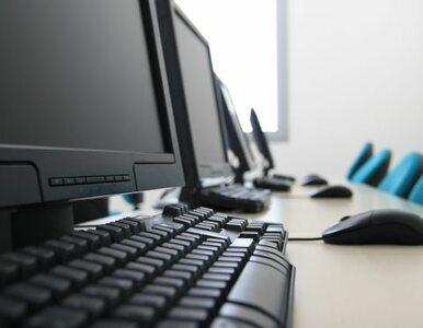 Belgia: fala rewizji w domach hakerów, którzy okradali Polaków