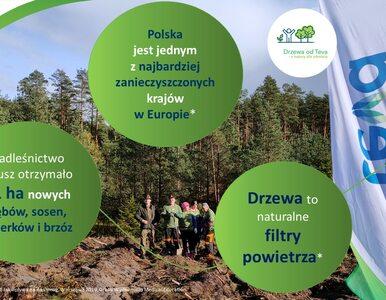 Teva sadzi ponad 100 000 drzew na rzecz czystszego powietrza