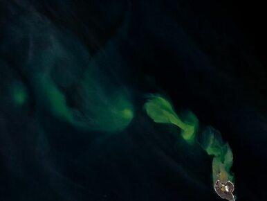 Skąd wzięły się zielone smugi na morzu? NASA publikuje zdjęcie i wyjaśnia
