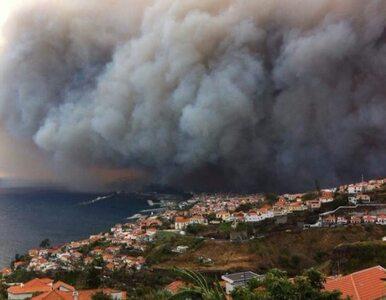 Popularna wśród turystów wyspa walczy z ogniem. Trzy ofiary śmiertelne,...