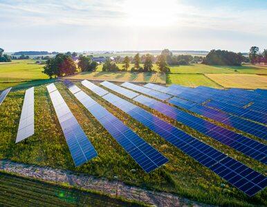 Columbus Elite: ekorewolucja w sprzedaży OZE i 67 megawatów w niecałe 2...