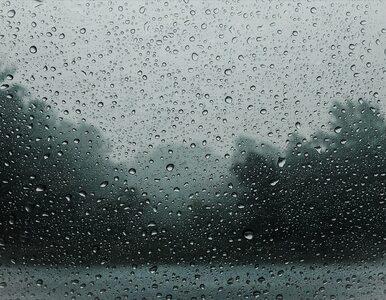 W piątek przelotne opady deszczu w większości kraju. Temperatura sięgnie...