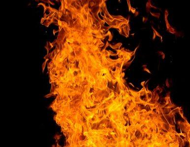 Gigantyczny pożar składowiska makulatury