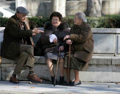 Polowanie na emeryta