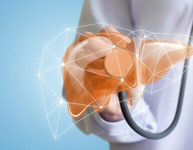 Próby wątrobowe – ważne badanie dla osób po 45 roku życia. Co pokazuje?