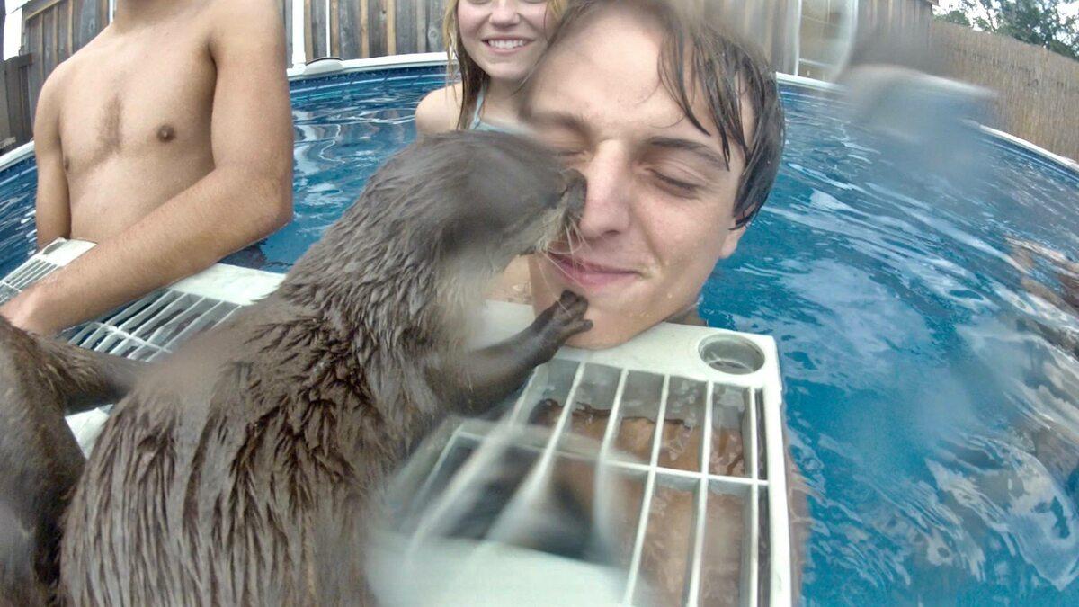 Turyści pływający z wydrami