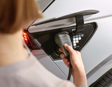 Kiedy w Europie wprowadzony zostanie zakaz sprzedaży aut spalinowych?