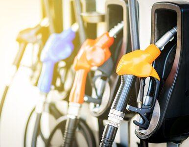 Ceny paliw się stabilizują. Podwyżki mogą być niewielkie