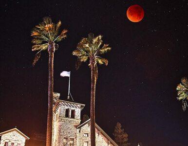 Internauci dzielą się zdjęciami superksiężyca. Zobaczcie niesamowite...