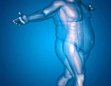"""Ten lek to nowy """"game changer"""" w walce z otyłością. Amerykanie właśnie..."""