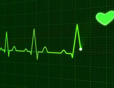Styl życia a choroby serca. Mity, w które każdy wierzy