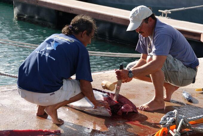 Filetowanie tuńczyka żółtopłetwego, Gomera, Wyspy Kanaryjskie