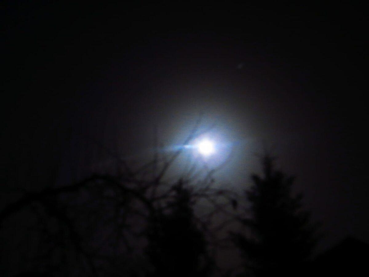 Niebieski Księżyc w Trawach