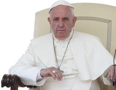Nowa encyklika. Papież apeluje o ekologiczne nawrócenie