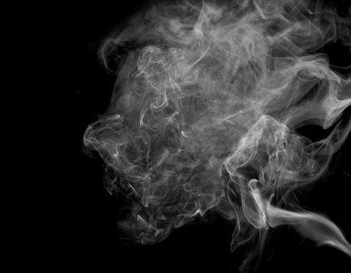 Uchwała ws. zakazu używania e-papierosów w komunikacji miejskiej
