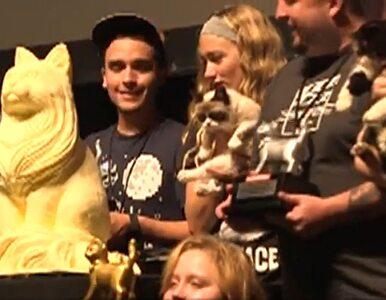 Grumpy Cat nagrodzony na festiwalu filmowym