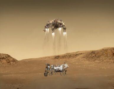 Prezydent Joe Biden, SpaceX, czy Google. Do NASA płyną gratulacje po...