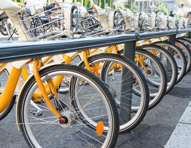 Łódź w tym roku bez rowerów miejskich. Konieczny będzie nowy przetarg