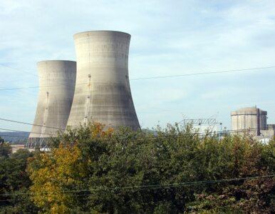 Niemcy sprawdzą czy nie grozi im Fukushima