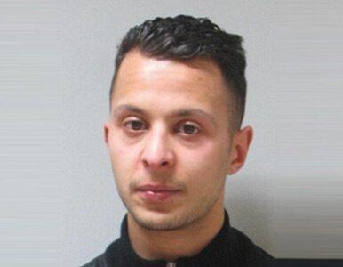 """Adwokat o Abdeslamie: To nie """"mózg"""" zamachów, tylko """"mały tępak"""""""