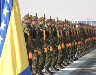 Chorwat będzie rządził Bośnią?