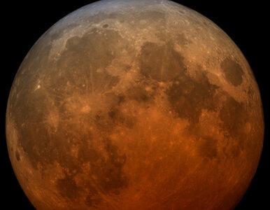 Trzy zjawiska jednego dnia. Superksiężyc, Krwawy Księżyc i całkowite...