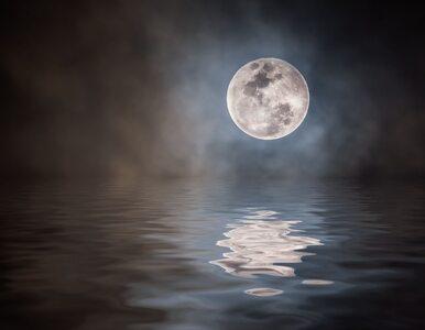 Księżyc Żniwiarzy. W piątek 13 września czeka nas na niebie wyjątkowa...
