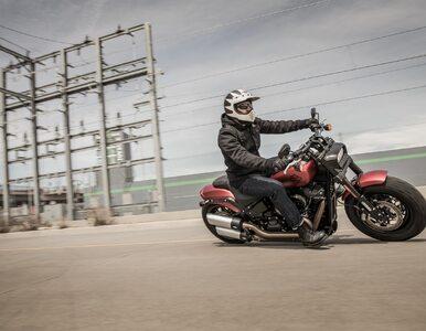 Fat Bob 114 - Harley z pazurem