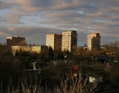 Morderstwo w Krakowie na Azorach. Zatrzymano pięciu uczestników domówki