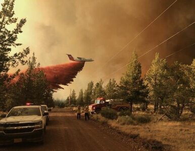 USA trawi pożar wielkości Los Angeles. Ogień zagraża tysiącom ludzi