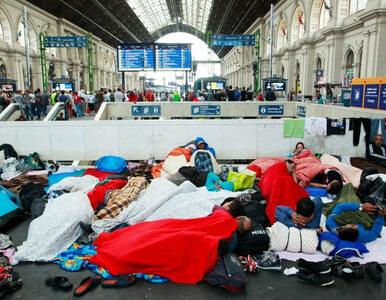 Niemiecki polityk o uchodźcach: To był błąd. Nie zdołamy tego opanować