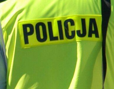Nalot policjantów w Lubuskiem. Szukali obrączki... kolegi. Sprawą zajmie...