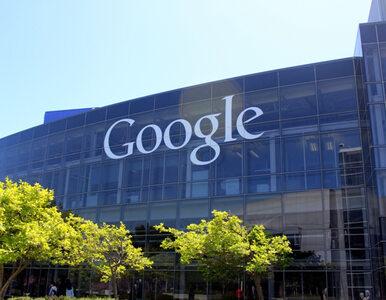 Sto procent energii z OZE. Google chce być pierwszym z gigantów