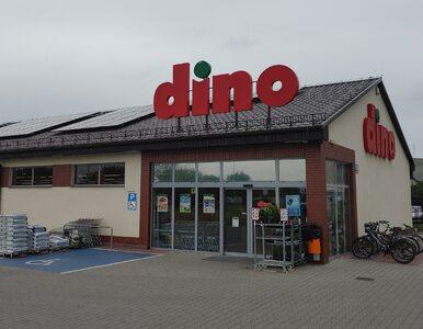 Dino otwiera niektóre sklepy na niedziele niehandlowe. Głównie nad...