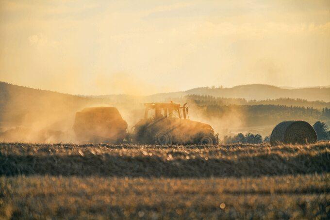 Żniwa wTop Farms – zdjęcie ilustracyjne