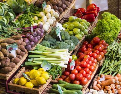 Przejście na wegetarianizm – nie wiesz, od czego zacząć? 6 prostych rad