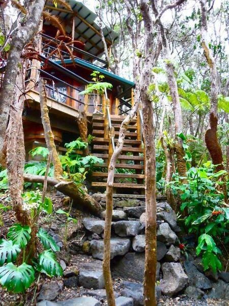 Dom na drzewie na Hawajach w pobliżu wulkanu Kilauea, od 449$/noc