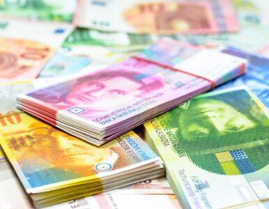 800 tys. Polaków wciąż spłaca kredyty frankowe. Ich łączna wartość może...