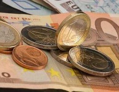Tajny dokument w sprawie euro