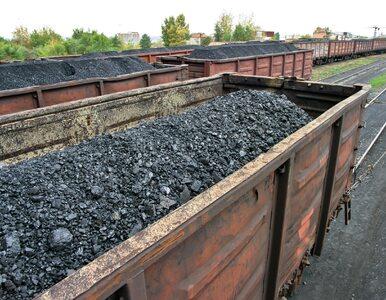 Wiceminister Klimatu: Zmniejszenie udziału węgla w energetyce nie jest...