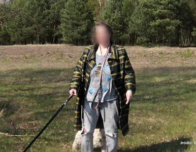 Uwaga! TVN: Wróżka z gromadą psów i kotów bezprawnie zajmuje wynajęty dom