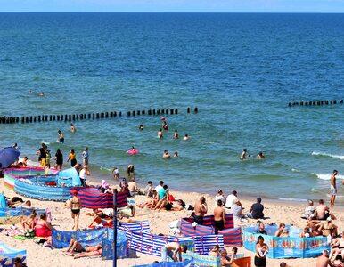 Bójka na plaży w Łebie, interweniowała policja. Poszło o...gotowaną...