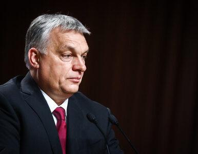 Fidesz Orbana opuszcza EPL Tuska. Powodem nowy regulamin