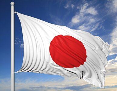 Silne trzęsienie ziemi w Japonii.  Urzędnicy uspokajają: Nie ma...