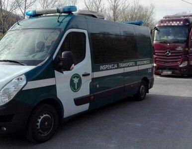 """Kierowca 40-tonowego TIR-a jechał po narkotykach i """"na magnesie"""" z Grecji"""