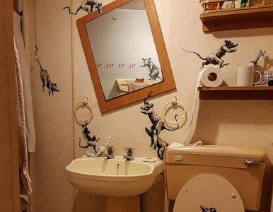 Banksy również pracuje w domu. Nowe graffiti artysty powstało w toalecie