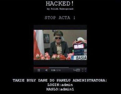Policja tropi hakerów. Bada 1000 spraw