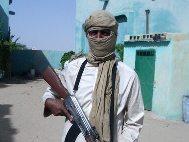 Terroryści z Al-Kaidy uwolnili Szweda, którego porwali w 2011 roku