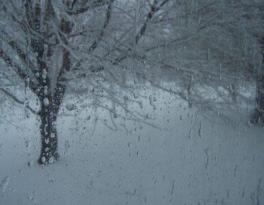 Zima nie powiedziała ostatniego słowa. Już wkrótce ochłodzenie i opady...
