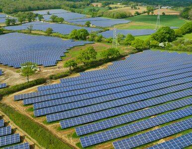 Zielona energia — klucz do redukcji śladu węglowego